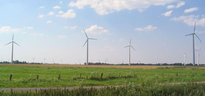 A grassland and windmills