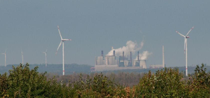 Hambach forest treetops with coal plant and wind turbines in background
