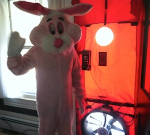 Nate Adams blower door pink easter bunny costume small