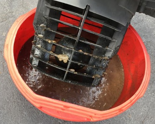 air conditioner condensate line sludge