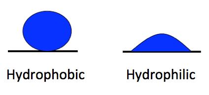 water liquid hydrophobic hydrophilic