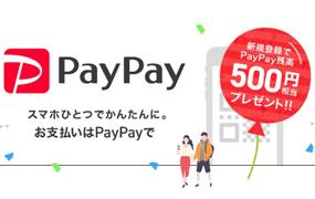 paypay_i