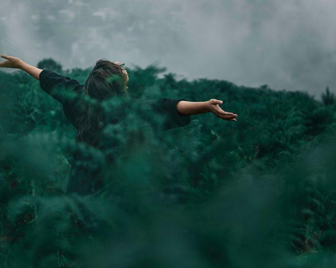 Mettons-nous à vivre NATURE ! A respirer NATURE !
