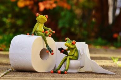 Comment chier dans les bois sans utiliser le papier toilette ou PQ. Trucs et astuces à découvrir.