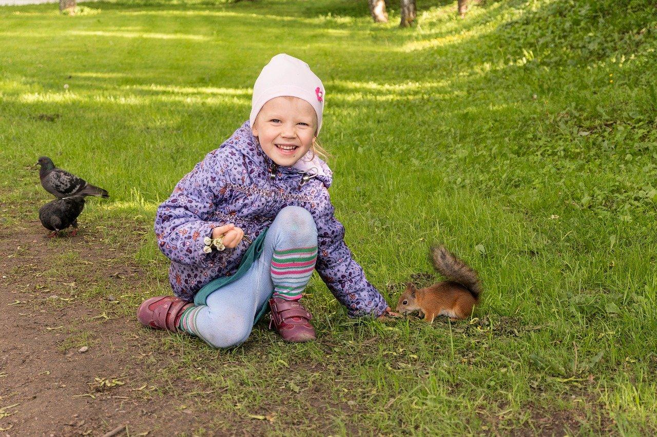 Allez voir les animaux de la ville si vous habitez en ville, les pigeons aussi ont le droit à leur quart d'heure de gloire. Vous pourriez y rencontrer d'autres petits curieux comme les écureuils.