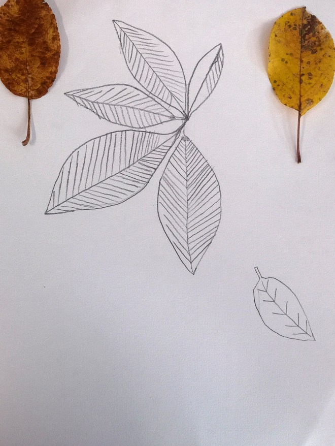 Leaves II