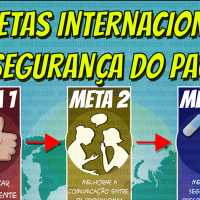 As Metas Internacionais da Segurança do Paciente