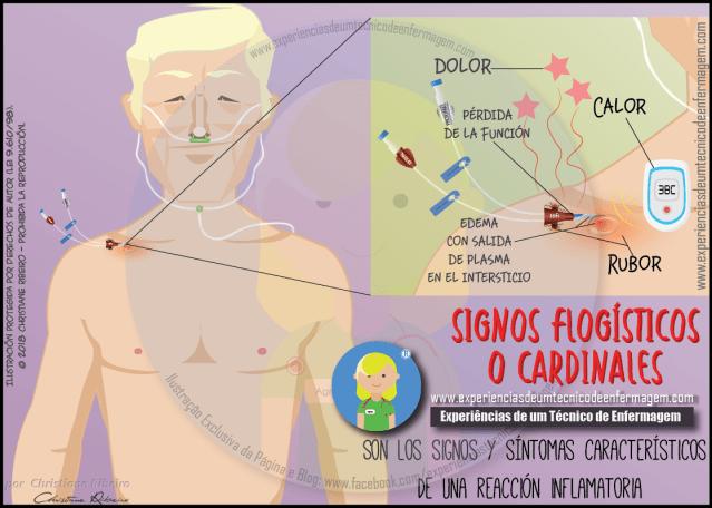 Signos Flogísticos