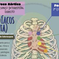 Focos de Ausculta Cardíacos