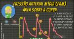 Pressão Arterial Média (PAM): Área sobre a Curva