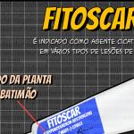 Fitoscar