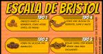Escala de Bristol