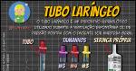 Tubo Laríngeo (TL)