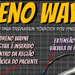 Dreno de Wayne