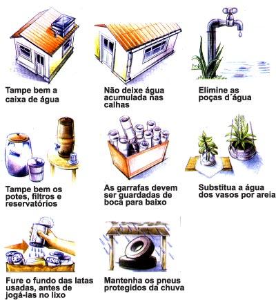 Dengue (3/3)