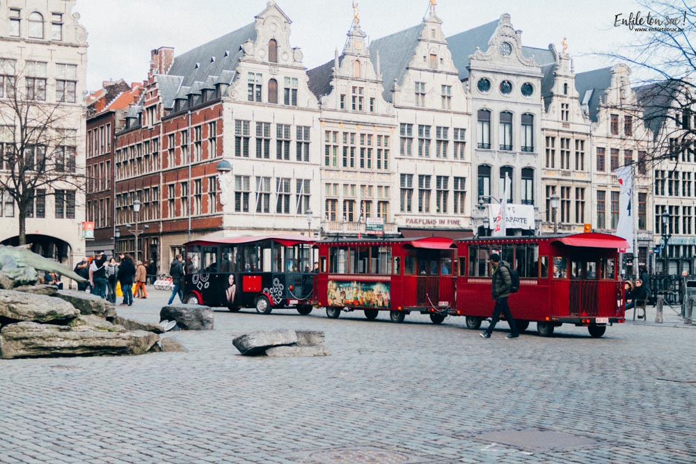 28012017 IMG 2061 2 visites incontournables à voir à Anvers