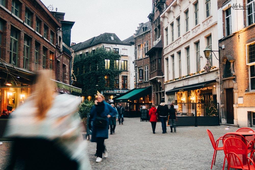28012017 IMG 2145 2 visites incontournables à voir à Anvers