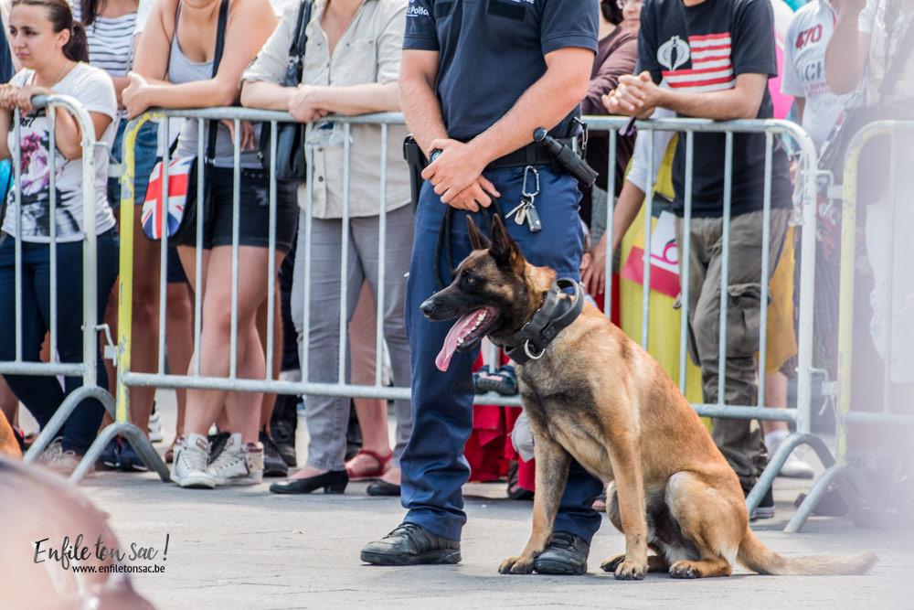 demonstration chien douanes 1 Fête nationale 2016, un 21 juillet à Bruxelles