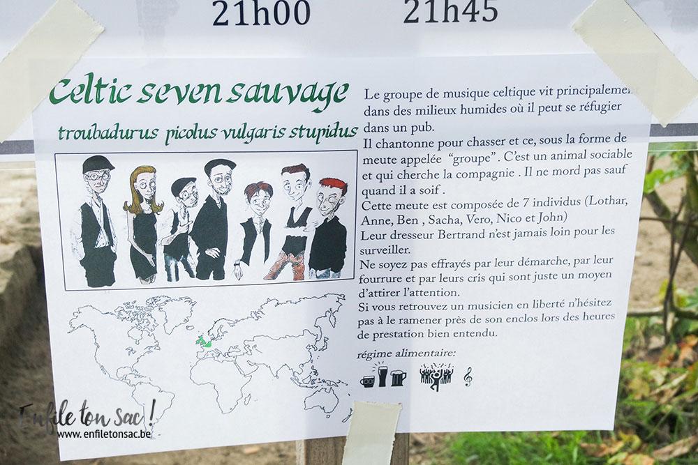 celtic seven sauvage estivales 2016 Pairi Daiza Estivales 2016 , mon avis, photos et vidéo.