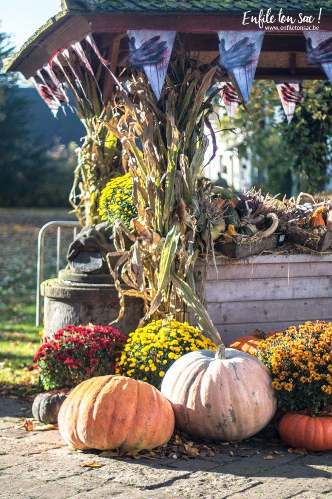 halloween pairidaiza 683x1024 Halloween à Pairi Daiza   dates et informations 2016