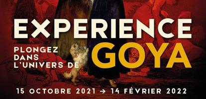 «EXPERIENCE GOYA» au Palais des Beaux-Arts de Lille