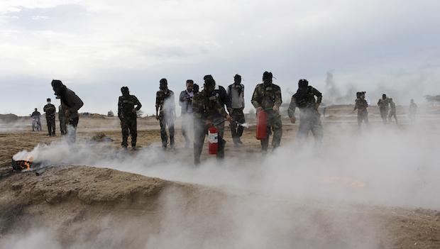 Basij groups to form in Egypt and Jordan, says Iran militia chief