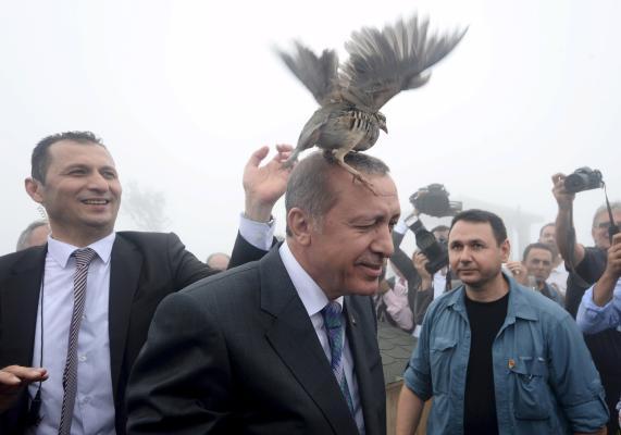 Biden Criticizes Press Freedom in Turkey