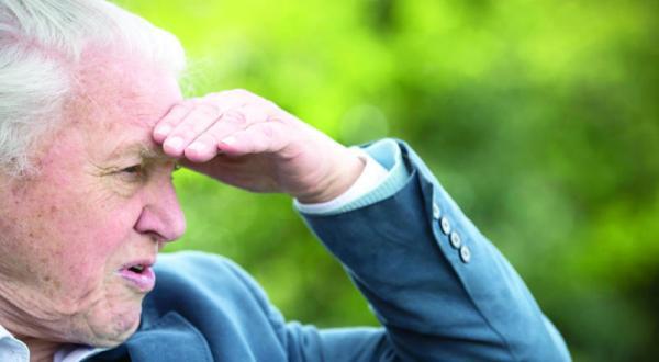 Britain Celebrates the Eminent Attenborough's 90TH