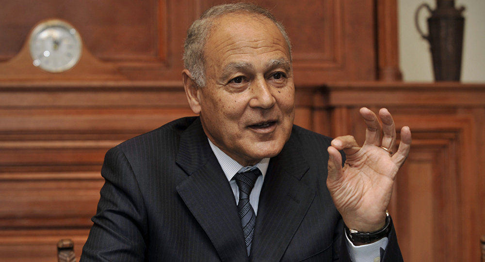 Aboul Gheit Receives Strong Arab Support