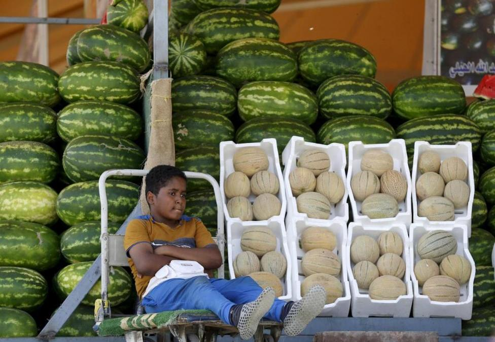 Company to Organize Sale of Agricultural Products in Saudi Arabia