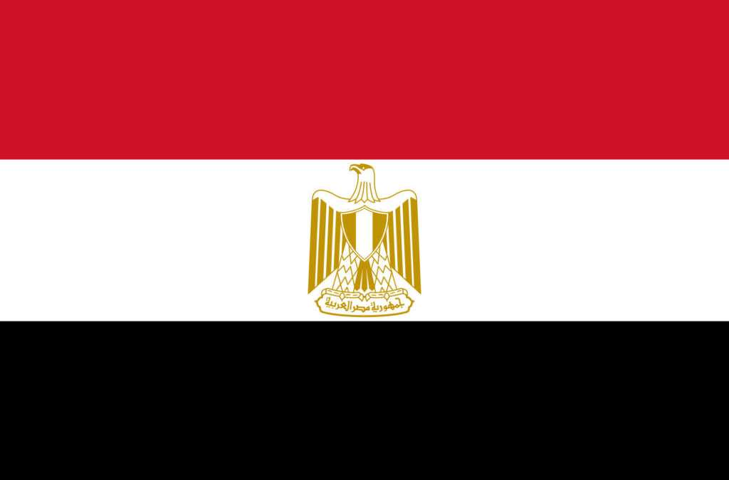 Egypt's Largest Organ Trafficking Network Busted