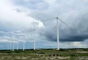 Cattle graze near wind turbines in Paracuru, Brazil, April 24, 2009.