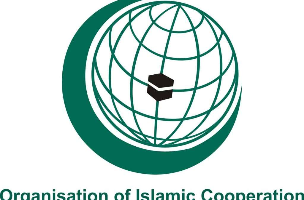 OIC Reviews Coordination with UN