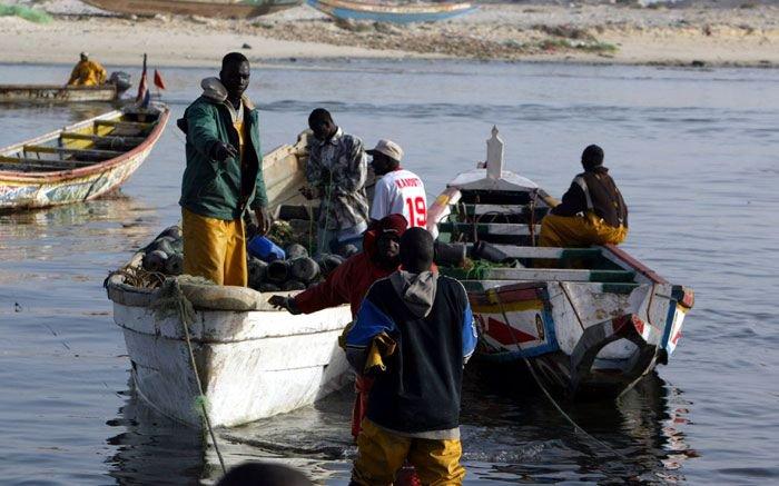Mauritania Launches Initiative to Motivate Fish Consumption
