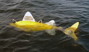 Robotic Fish to Monitor Water Pollution