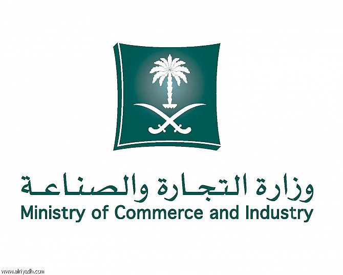 Saudi Arabia Issues Guide for Licensing 274 Commercial Activities