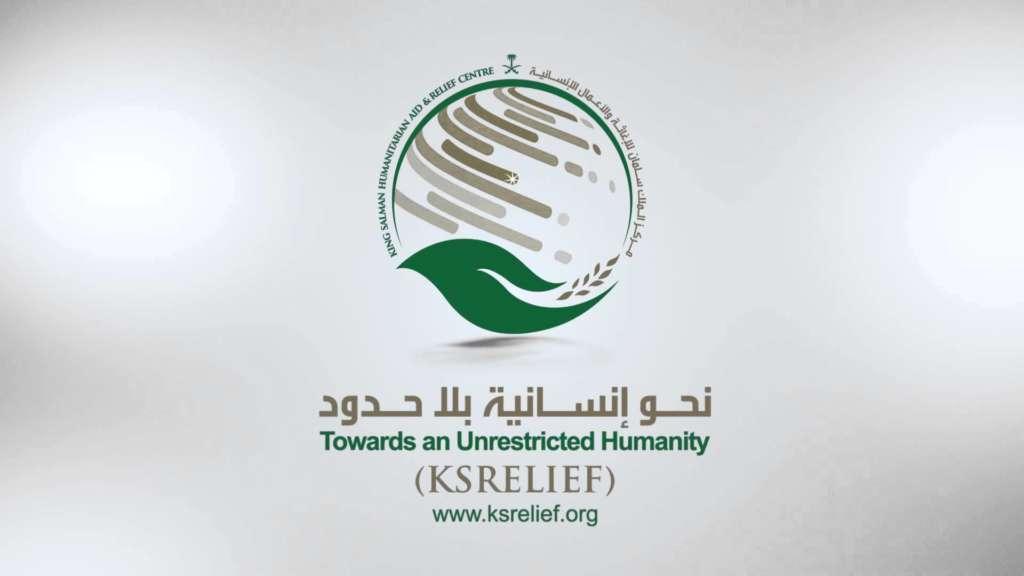 Yemeni Official: 'GCC States Consider Allocating 1,000 Treatment Grants to Yemenis'