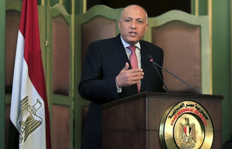Egyptian FM Says Eliminating ISIS 'Isn't the End'