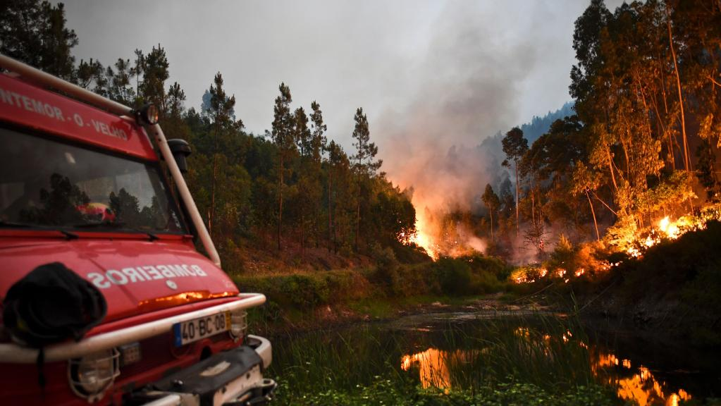 30 Killed as Fires Rage in Portugal and Spain