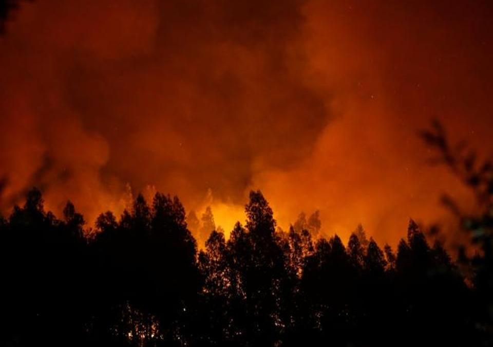 Portugal's Interior Minister Resigns Over Wildfires Criticism