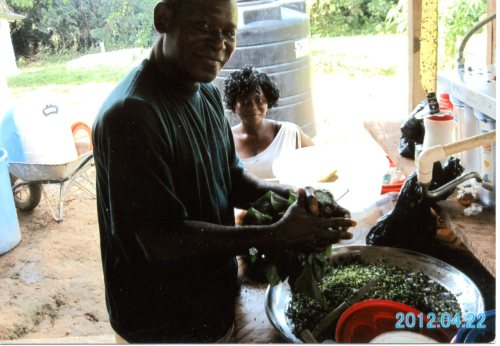 A man chopping up the leaves of sweet potatoes.