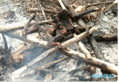 Bush meat being barbecued.