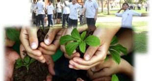 المدارس الخضراء  Green Schools