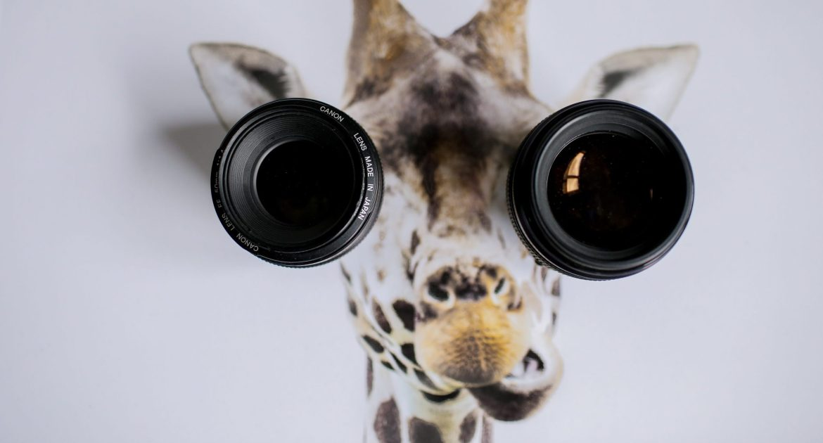 Here's lookin' at you, kid. Or is this a googley-eyes thing?