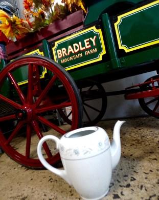 Teapot Bradley Mountain Farm