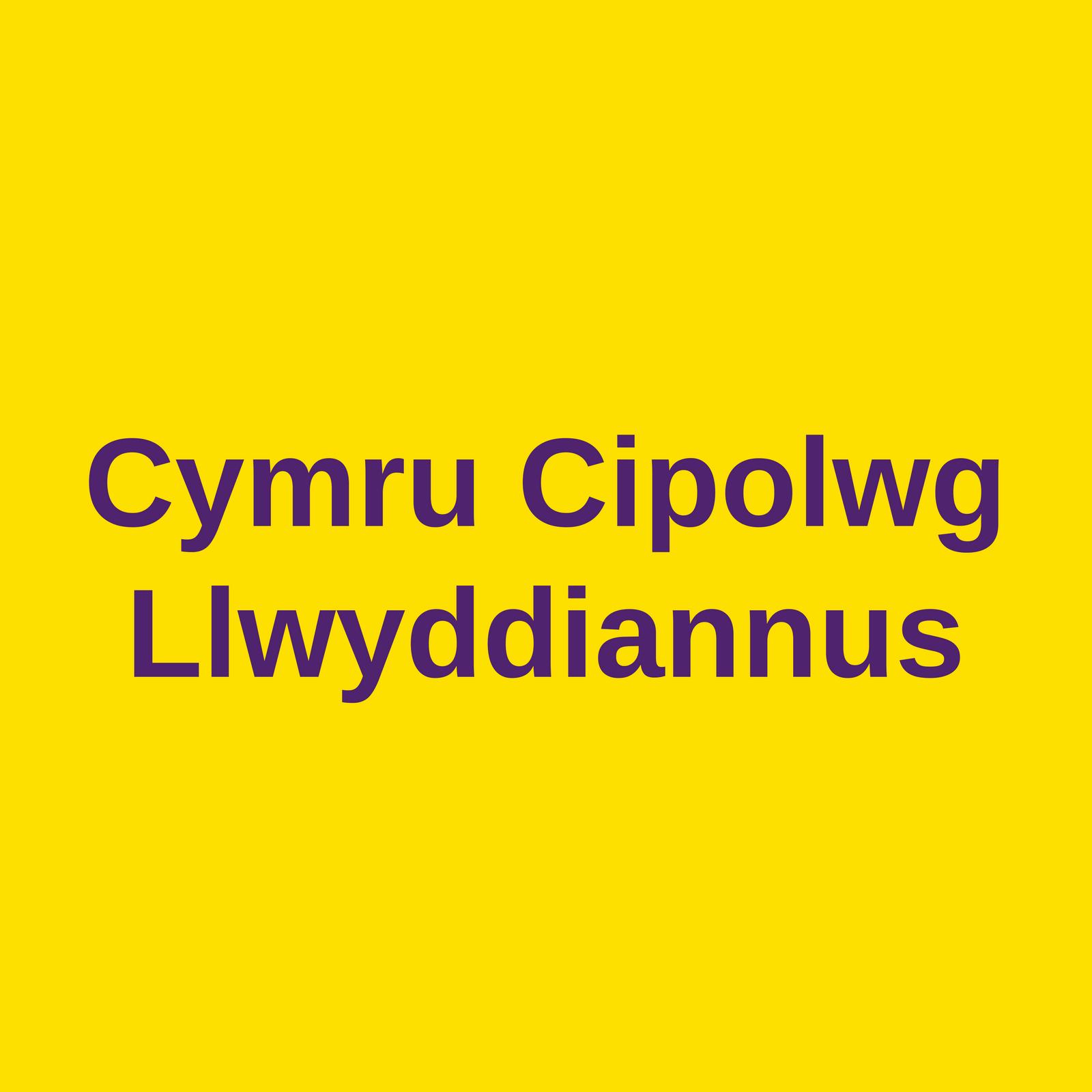 cymru cipolwg llwyddiannus