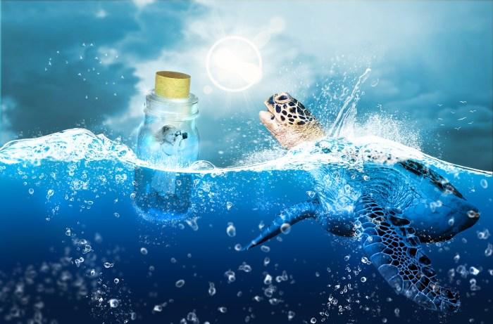 water-3172164_1920.jpg