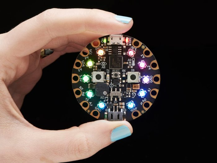 circuitplaygroundexpress.jpg