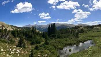Patagonia Powder Bowl Jacket - Recycled Gore-Tex Protection