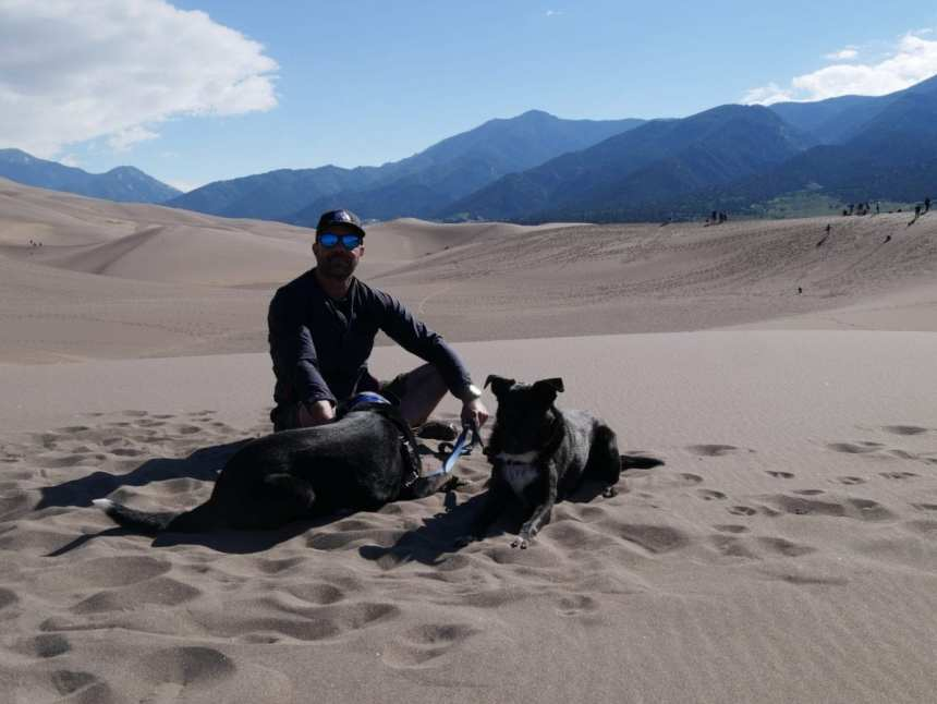 Sand Dunes with Dogs